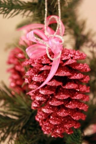 pine_cone-3