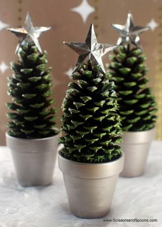 pine_cone-7