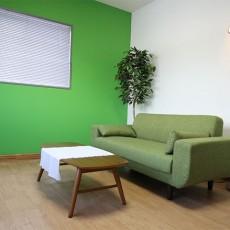 カフェ風リビング【1】壁の1面だけ緑色にペイントしてみた!