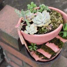まるでおとぎ話みたい!植木鉢を素敵にリメイクDIYしてみた。