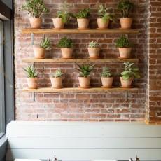 海外インテリアに学ぶ!お部屋に植物を取り入れるアイデア実例集