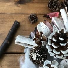 松ぼっくりとマドレーヌ型を使った簡単クリスマスオブジェを作ってみた。
