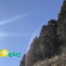 みかみんのロードバイク日和 埼玉県飯能市 CAFE KIKIさん