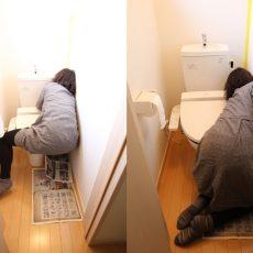 運気アップを狙え!自宅の賃貸トイレを風水的に良くしてみた。