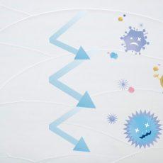 漆喰には抗菌・抗ウイルス機能があるのをご存知ですか?